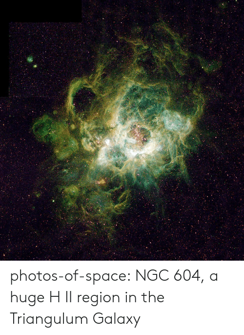 Tumblr, Blog, and Space: photos-of-space:  NGC 604, a huge H II region in the Triangulum Galaxy