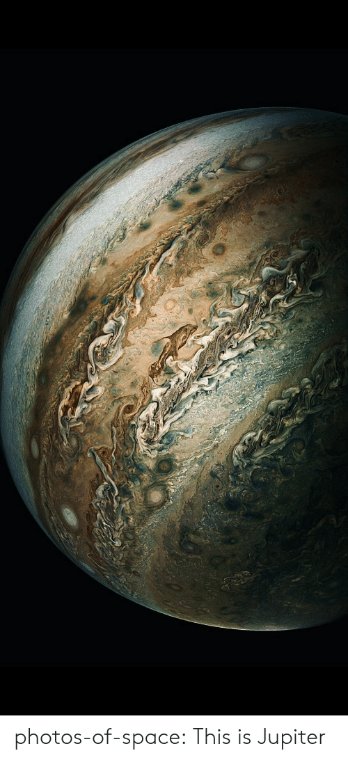 Tumblr, Blog, and Jupiter: photos-of-space:  This is Jupiter