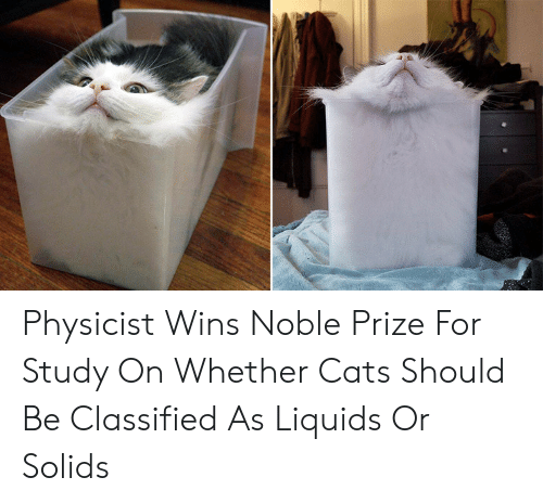 classified: Physicist Wins Noble Prize For Study On Whether Cats Should Be Classified As Liquids Or Solids