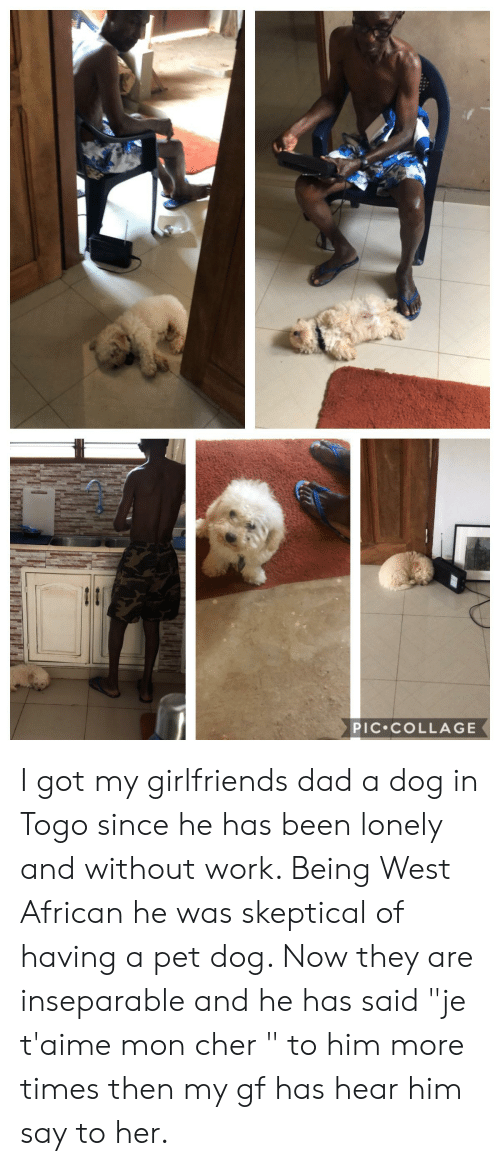 "Cher, Dad, and Work: PIC COLLAGE I got my girlfriends dad a dog in Togo since he has been lonely and without work. Being West African he was skeptical of having a pet dog. Now they are inseparable and he has said ""je t'aime mon cher "" to him more times then my gf has hear him say to her."