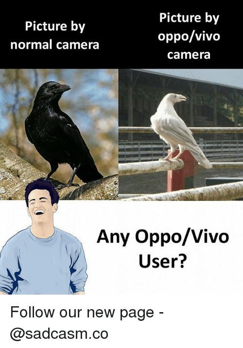 Memes, Camera, and 🤖: Picture by  normal camera  Picture by  oppo/vivo  camera  Any Oppo/Vivo  User?  IVO Follow our new page - @sadcasm.co