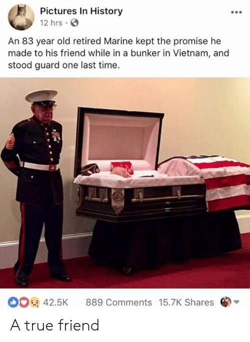 True, History, and Pictures: Pictures In History  12 hrs  An 83 year old retired Marine kept the promise he  made to his friend while in a bunker in Vietnam, and  stood guard one last time  42.5K 889 Comments 15.7K Shares A true friend
