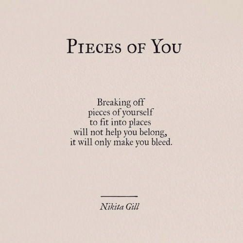 Help, Nikita, and Fit: PIECES oF YoU  Breaking off  pieces of yourself  to fit into places  will not help you belong,  it will only make you bleed.  Nikita Gill