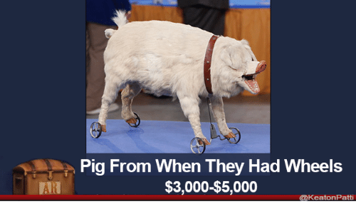 Pig, They, and Wheels: Pig From When They Had Wheels  $3,000-$5,000  AR  @keatonPatti
