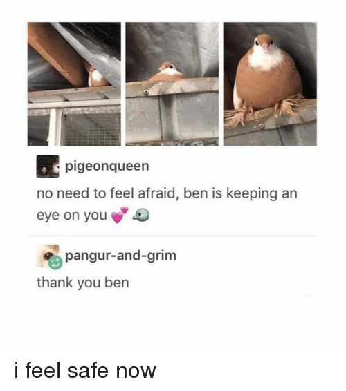 Thank You, Eye, and Grim: pigeonqueen  no need to feel afraid, ben is keeping an  eye on you  pangur-and-grim  thank you ben i feel safe now