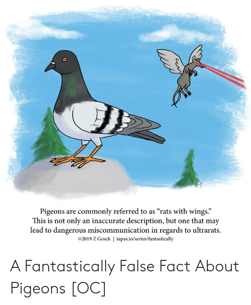"Wings, Lead, and One: Pigeons are commonly referred to as ""rats with wings.""  This is not only an inaccurate description, but one that may  lead to dangerous miscommunication in regards to ultrarats.  2019 Z Gosck 