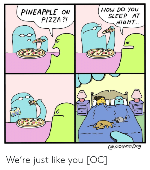 Pizza, Pineapple, and Sleep: PINEAPPLE ON  PIZZA?!  HOw Do YOU  SLEEP AT  NIGHT...  @ Dogmo Dog We're just like you [OC]