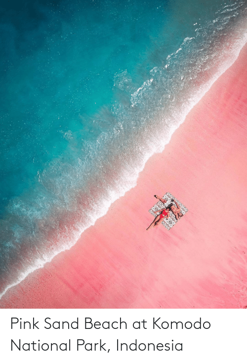 Indonesia: Pink Sand Beach at Komodo National Park, Indonesia