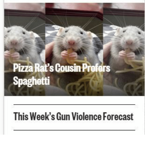 Pizza, Forecast, and Spaghetti: Pizza Rat's Cousin Prefers  Spaghetti  This Week's Gun Violence Forecast