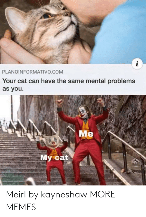 Mental: PLANOINFORMATIVO.COM  Your cat can have the same mental problems  as you.  Me  My cat Meirl by kayneshaw MORE MEMES