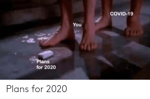 Plans: Plans for 2020