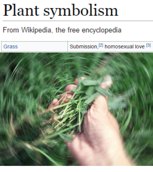 Love, Wikipedia, and Free: Plant symbolism  From Wikipedia, the free encyclopedia   Grass  Submission,12] homosexual love [3