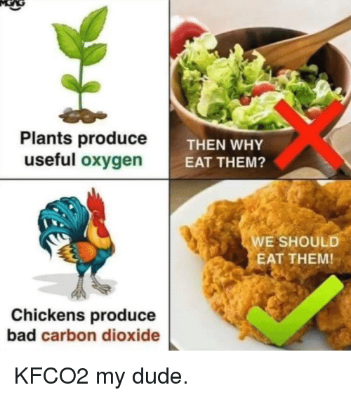 Bad, Dude, and Oxygen: Plants produceT  useful oxygen  THEN WHY  EAT THEM?  E SHOULD  EAT THEM!  Chickens produce  bad carbon dioxide KFCO2 my dude.