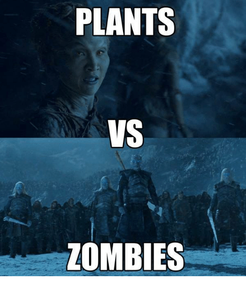 Memes, Zombies, and Zombie: PLANTS  VS  ZOMBIES