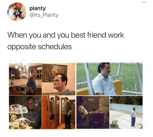 Best Friend, Work, and Best: planty  @lts_Planty  When you and you best friend work  opposite schedules