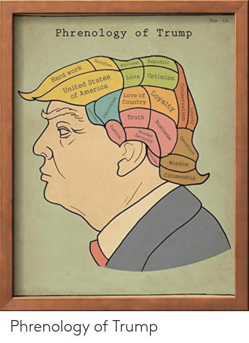 America, Donald Trump, and Love: Plate-12  Phrenology of Trump  Republic  Sacrifice  Altruism  Optimism  United States  of America  Love  Hard work  Loyalty  Love of  Country  Truth  Border  Security  Wisdom  Citizenship  Liberty  Conservatism  Devotion  Business  Justice  Patriotism  Fortitude  Commitment Phrenology of Trump