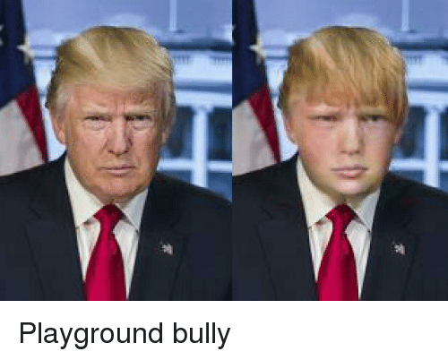 Politics, Bully, and Playground