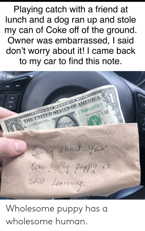 Puppy, Wholesome, and I Came: Playing catch with a friend at  lunch and a dog ran up and stole  my can of Coke off of the ground  Owner was embarrassed, I said  don't worry about it! I came back  to my car to find this note  INFO  CA  L 74802670 T  WASHINGTON,D.C.  THIS NOTE IS LEGAL TENDER Wholesome puppy has a wholesome human.