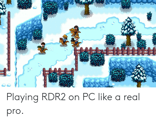 Rdr2: Playing RDR2 on PC like a real pro.