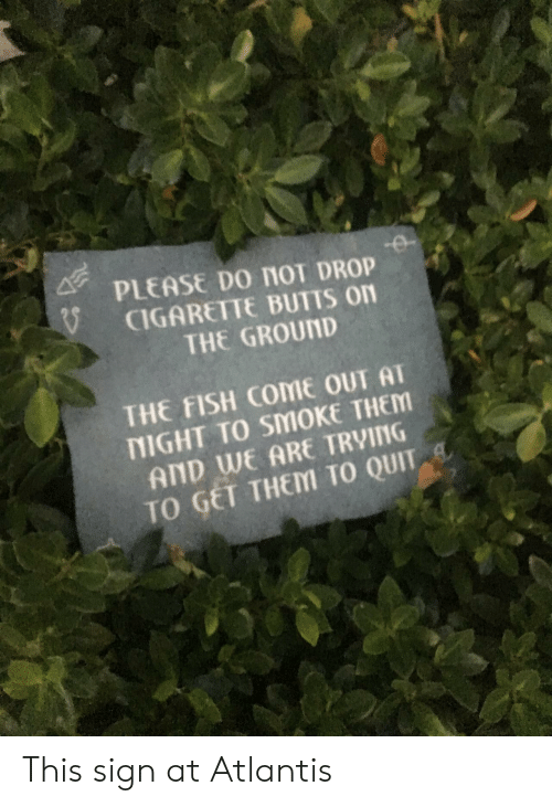 Atlantis, Fish, and Cigarette: PLEASE Do nol DROP  CIGARETTE BUTTS on  THE GROUND  THE FISH COME OUT AT  NIGHT TO SMOKE THEM  AND WE ARE TRVING  TO GET THEM TO QUIT This sign at Atlantis