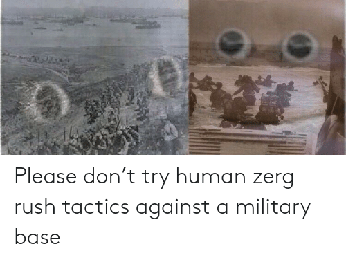 zerg rush: Please don't try human zerg rush tactics against a military base