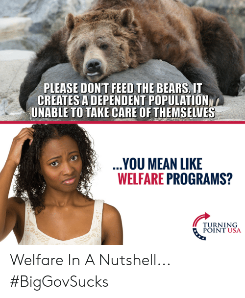 Memes, Bears, and Mean: PLEASE DON'T FEED THE BEARS, IT  CREATES A DEPENDENT POPULATION  UNABLE TO TAKE CARE OF THEMSELVES  YOU MEAN LIKE  WELFARE PROGRAMS?  TURNING  POINT USA Welfare In A Nutshell... #BigGovSucks