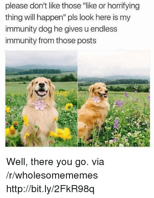 """Http, Dog, and Via: please don't like thoe """"like or horrifying  thing will happen"""" pls look here is my  immunity dog he gives u endless  immunity from those posts Well, there you go. via /r/wholesomememes http://bit.ly/2FkR98q"""