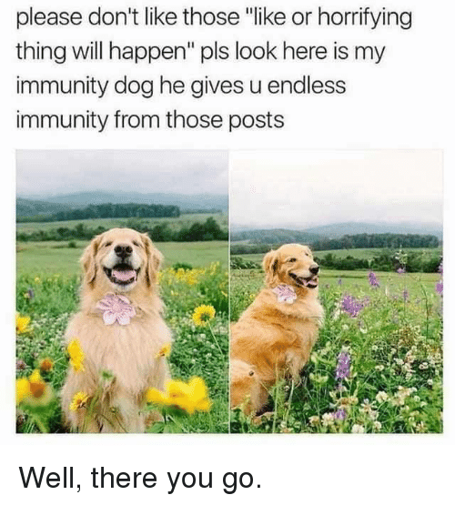 """there you go: please don't like thoe """"like or horrifying  thing will happen"""" pls look here is my  immunity dog he gives u endless  immunity from those posts Well, there you go."""