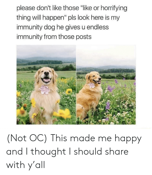 """Happy, Thought, and Dog: please don't like those """"like or horrifying  thing will happen"""" pls look here is my  immunity dog he gives u endless  immunity from those posts (Not OC) This made me happy and I thought I should share with y'all"""