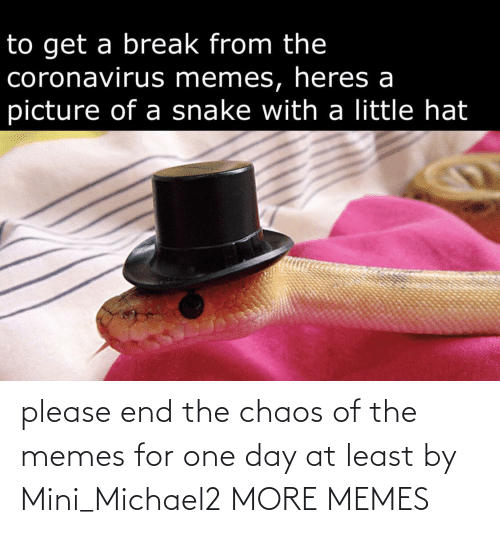 Dank, Memes, and Target: please end the chaos of the memes for one day at least by Mini_Michael2 MORE MEMES