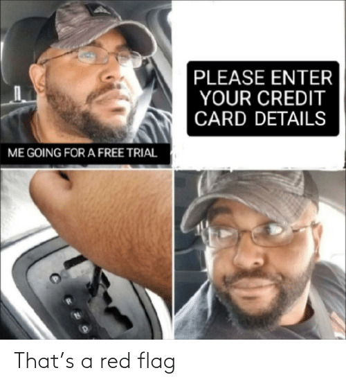 flag: PLEASE ENTER  YOUR CREDIT  CARD DETAILS  ME GOING FOR A FREE TRIAL That's a red flag
