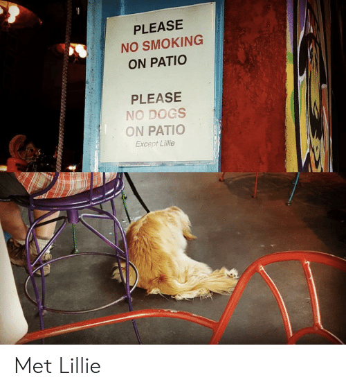 Dogs, Smoking, and Please: PLEASE  NO SMOKING  ON PATIO  PLEASE  NO DOGS  ON PATIO  Except Lillie Met Lillie