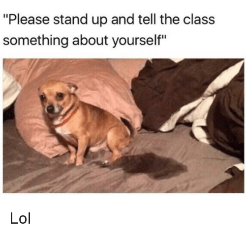 "Funny, Lol, and Class: ""Please stand up and tell the class  something about yourself"" Lol"