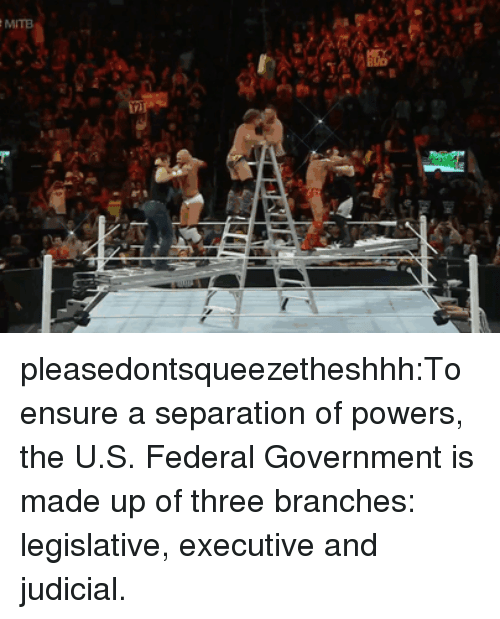 Tumblr, Blog, and Ensure: pleasedontsqueezetheshhh:To ensure a separation of powers, the U.S. Federal Government is made up of three branches: legislative, executive and judicial.