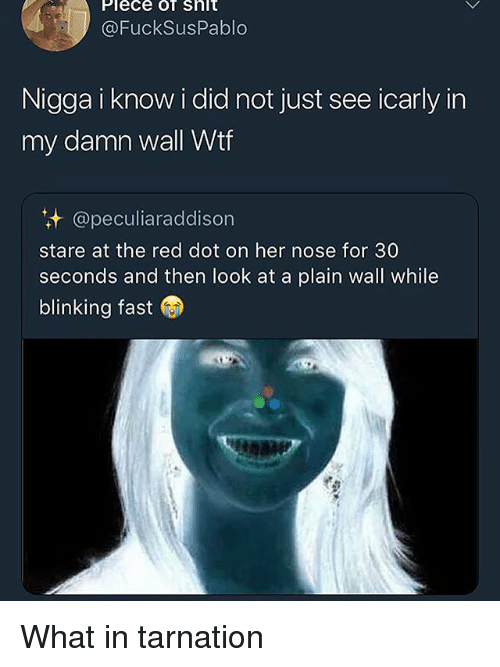 Funny, iCarly, and Wtf: Plece of shlt  @FuckSusPablo  Nigga i know i did not just see icarly in  my damn wall Wtf  @peculiaraddison  stare at the red dot on her nose for 30  seconds and then look at a plain wall while  blinking fast What in tarnation