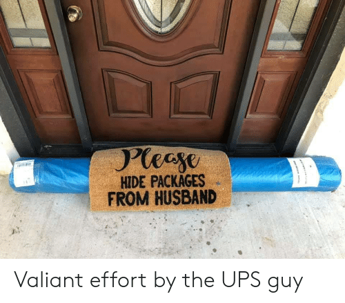 valiant: Pleeye  HIDE PACKAGES  FROM HUSBAND Valiant effort by the UPS guy