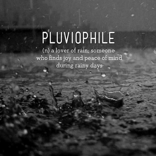 Rain, Mind, and Peace: PLUVIOPHILE  (n) a lover of ráin; someone  who finds joy and peace of mind  during rainy days