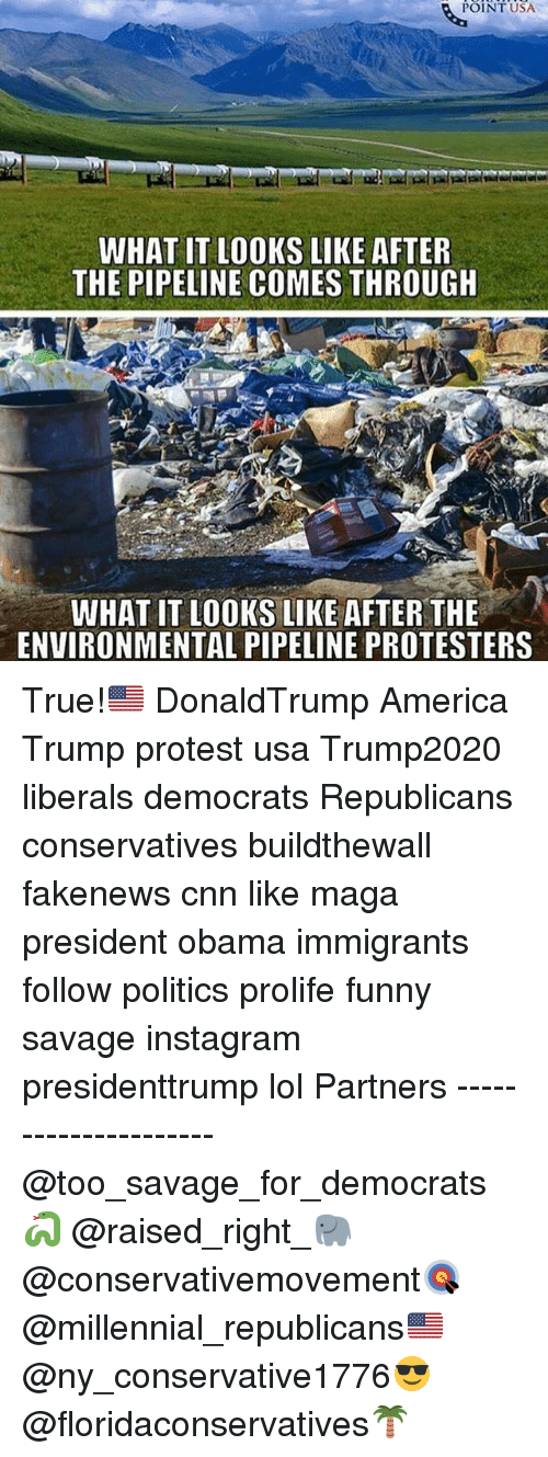 America, cnn.com, and Funny: POINT USA  WHAT IT LOOKS LIKE AFTER  THE PIPELINE COMES THROUGH  WHAT IT LOOKS LIKE AFTER THE  ENVIRONMENTAL PIPELINE PROTESTERS True!🇺🇸 DonaldTrump America Trump protest usa Trump2020 liberals democrats Republicans conservatives buildthewall fakenews cnn like maga president obama immigrants follow politics prolife funny savage instagram presidenttrump lol Partners --------------------- @too_savage_for_democrats🐍 @raised_right_🐘 @conservativemovement🎯 @millennial_republicans🇺🇸 @ny_conservative1776😎 @floridaconservatives🌴