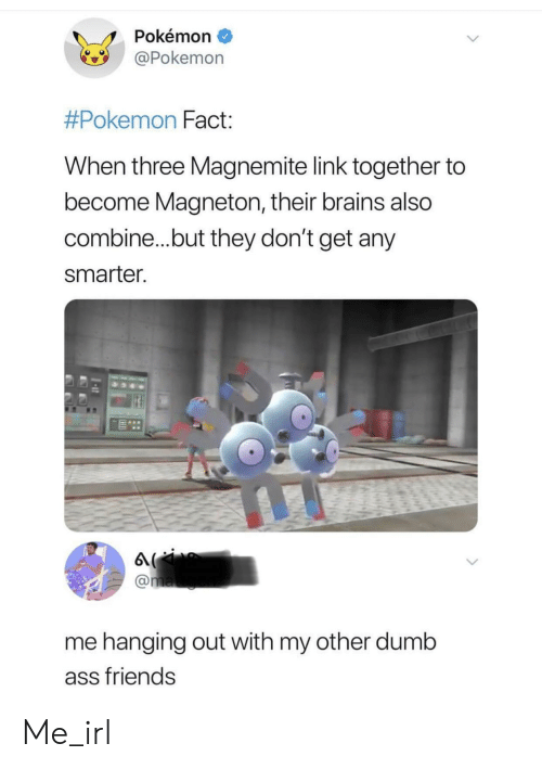 Ass, Brains, and Dumb: Pokémon  Pokemon  #Pokemon Fact  When three Magnemite link together to  become Magneton, their brains also  combine...but they don't get any  smarter  me hanging out with my other dumb  ass friends Me_irl