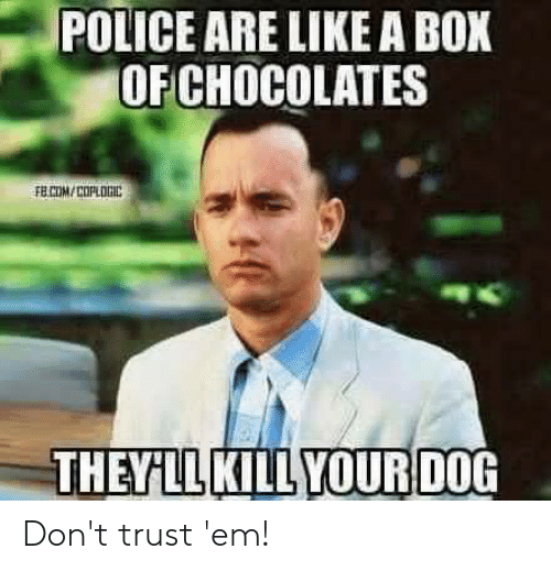 Police, Reddit, and Box: POLICE ARE LIKE A BOX  OF CHOCOLATES  FELCOM/COPLORIC  THEYLL KILL YOURDOG Don't trust 'em!