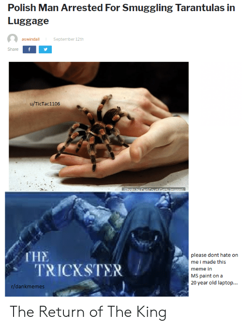 Meme, Getty Images, and Images: Polish Man Arrested For Smuggling Tarantulas in  Luggage  September 12th  aswindall  Share  u/TicTac1106  Photo hy Carl Court/Getty Images  ГНE  TRICKSTER  please dont hate on  me i made this  meme in  MS paint on a  20 year old laptop...  r/dankmemes The Return of The King