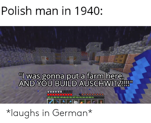 "polish: Polish man in 1940:  ""l was gonna put a farm here,  AND YOU BUILD AUSCHWITZ!!!  O0000 *laughs in German*"