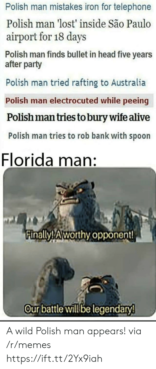 Alive, Florida Man, and Head: Polish man mistakes iron for telephone  Polish man 'lost' inside São Paulo  airport for 18 days  Polish man finds bullet in head five years  after party  Polish man tried rafting to Australia  Polish man electrocuted while peeing  Polish man tries to bury wife alive  Polish man tries to rob bank with spoon  Florida man:  inallyTAworthy opponent!  Our batle illbe legendary A wild Polish man appears! via /r/memes https://ift.tt/2Yx9iah