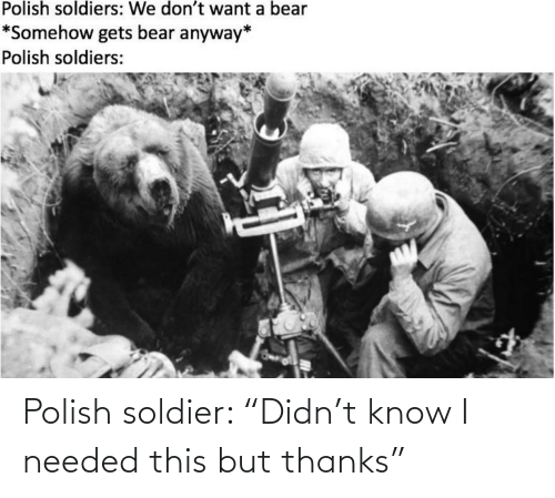 "needed: Polish soldier: ""Didn't know I needed this but thanks"""
