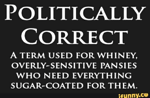 Sugar, Pansies, and Who: POLITICALLY  CORRECT  A TERM USED FOR WHINEY,  OVERLY-SENSITIVE PANSIES  WHO NEED EVERYTHING  SUGAR-COATED FOR THEM  ifunny.ce