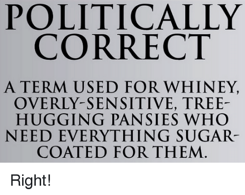 Memes, Pansies, and Political Correctness: POLITICALLY  CORRECT  A TERM USED FOR WHINEY,  OVERLY-SENSITIVE, TREE-  HUGGING PANSIES WHO  NEED EVERYTHING SUGAR  COATED FOR THEM Right!