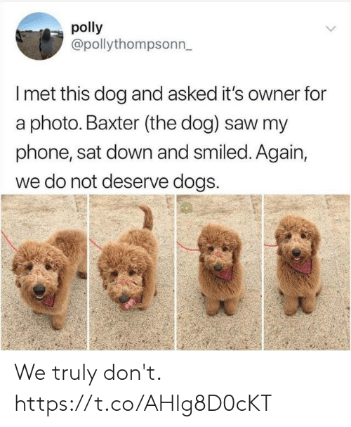 Dogs, Funny, and Phone: polly  @pollythompsonn  I met this dog and asked it's owner for  a photo. Baxter (the dog) saw my  phone, sat down and smiled. Again,  we do not deserve dogs. We truly don't. https://t.co/AHIg8D0cKT