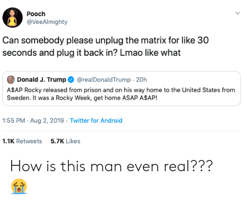 30 seconds: Pooch  @VeeAlmighty  Can somebody please unplug the matrix for like 30  seconds and plug it back in? Lmao like what  Donald J. Trump  @realDonaldTrump 20h  A$AP Rocky released from prison and on his way home to the United States from  Sweden. It was a Rocky Week, get home ASAP A$AP!  1:55 PM Aug 2, 2019 Twitter for Android  5.7K Likes  1.1K Retweets How is this man even real??? 😭