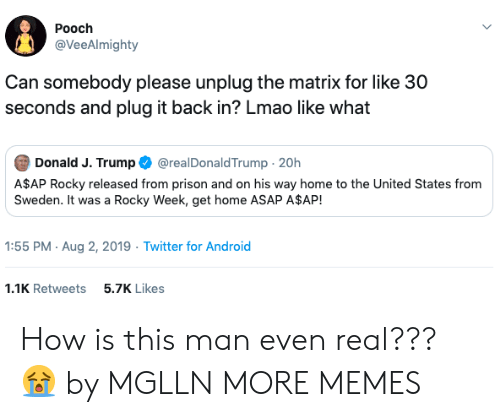 30 seconds: Pooch  @VeeAlmighty  Can somebody please unplug the matrix for like 30  seconds and plug it back in? Lmao like what  Donald J. Trump  @realDonaldTrump 20h  A$AP Rocky released from prison and on his way home to the United States from  Sweden. It was a Rocky Week, get home ASAP A$AP!  1:55 PM Aug 2, 2019 Twitter for Android  1.1K Retweets  5.7K Likes How is this man even real??? 😭 by MGLLN MORE MEMES