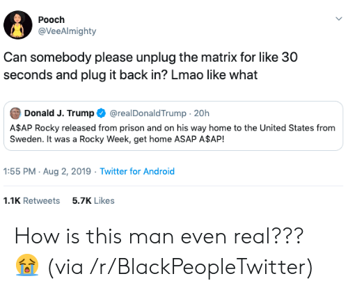30 seconds: Pooch  @VeeAlmighty  Can somebody please unplug the matrix for like 30  seconds and plug it back in? Lmao like what  Donald J. Trump  @realDonaldTrump 20h  A$AP Rocky released from prison and on his way home to the United States from  Sweden. It was a Rocky Week, get home ASAP A$AP!  1:55 PM Aug 2, 2019 Twitter for Android  1.1K Retweets  5.7K Likes How is this man even real??? 😭 (via /r/BlackPeopleTwitter)